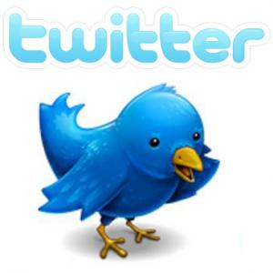 Twitter: segui l'uccellino azzurro...